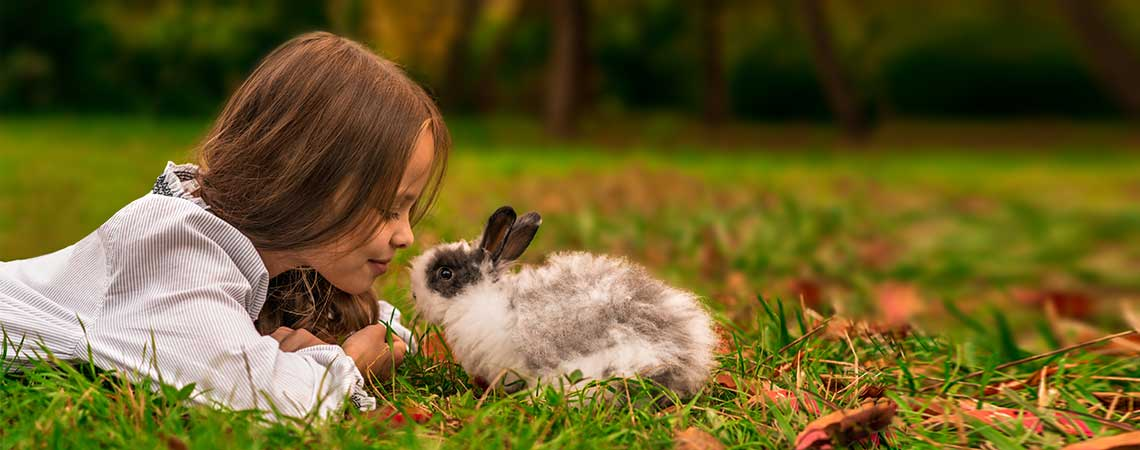 Girl with Rabbit Slider for Oak Harbor Veterinary Hospital